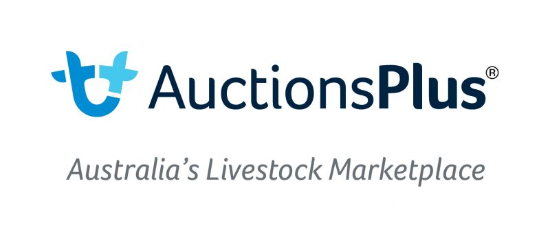 Auctions Plus