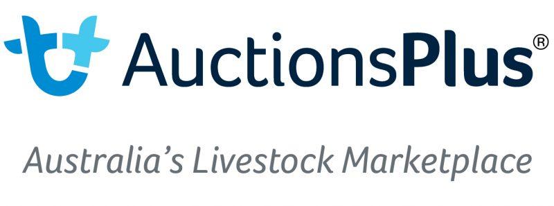 Auctions Plus Logo